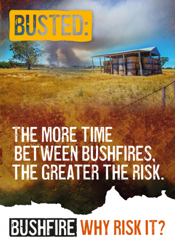 Busted: The more time between bushfires, the greater the risk.