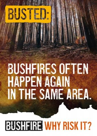 Busted: Bushfires, often happen again in the same area.